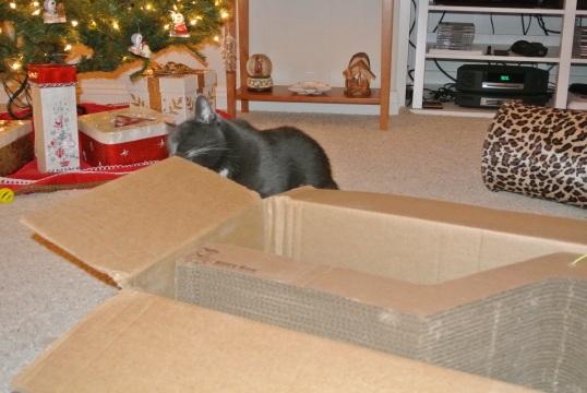 mh box 1