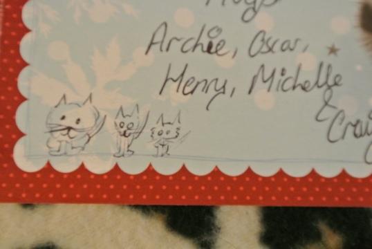 moggies card 2