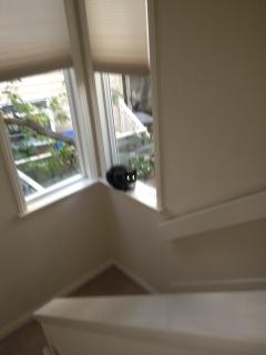 Window Ledge Seat 1