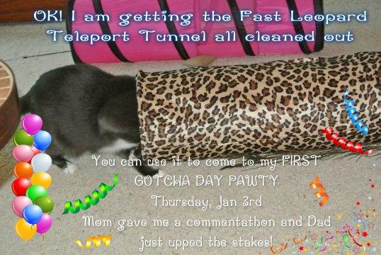 pawty invite