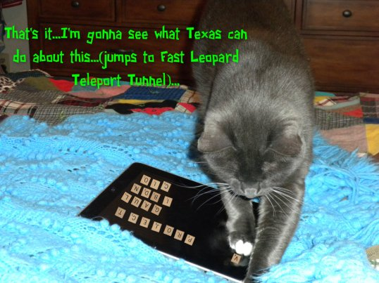 pizap.com13579548389911_calling in Texas