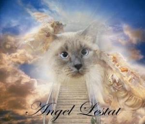 angel lestat