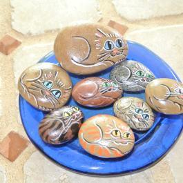 Cat Stones