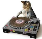 DJ's playing YOUR TUNES