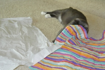 I know the feather is under here!