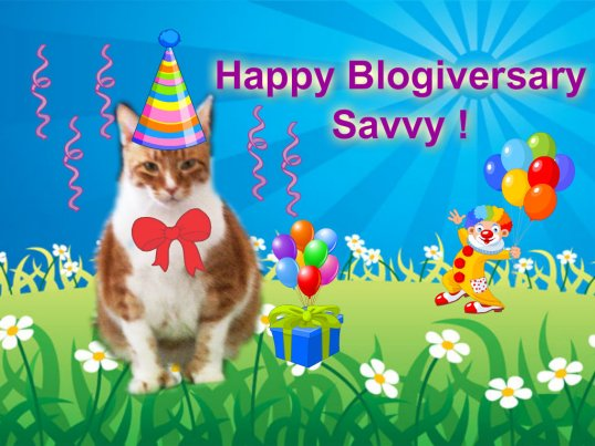 SavvyBlogiversary_from Sammy