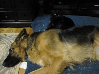 Grete sleeping with Cory