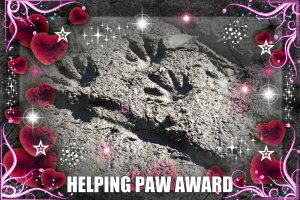 Helping Animal Award