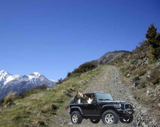 Jeep take 2