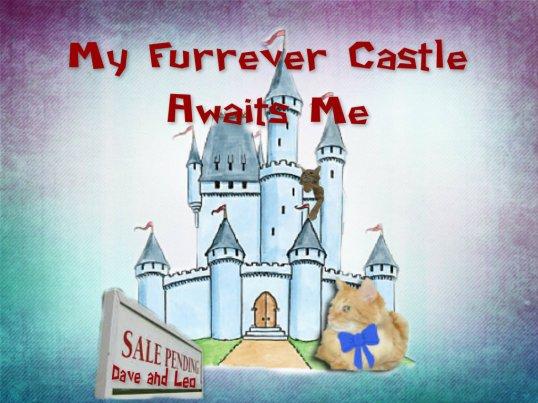 Leos Castle Furrever
