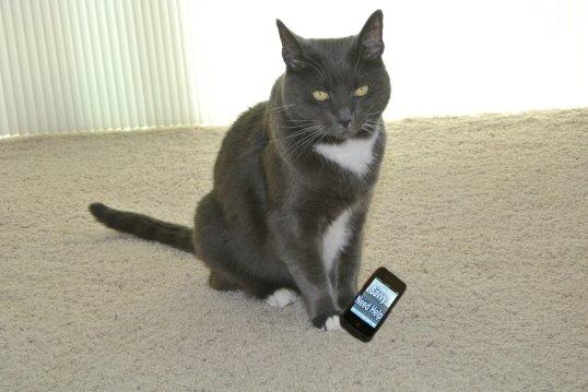 Nissy sends savvy text