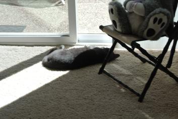 ahhhhh...fresh air...and sun