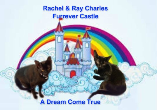 final_furrever castle dream