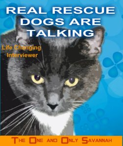 RR Dogs Are Talking