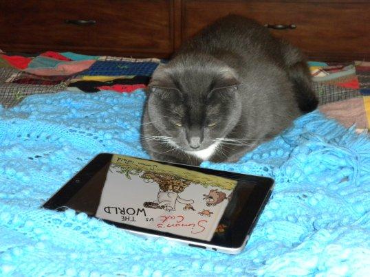 Reading Simon on iPad