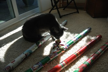 First, I purrsonally checked wrapping