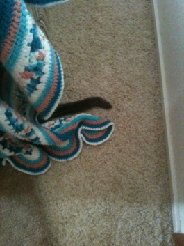 I hid a lot