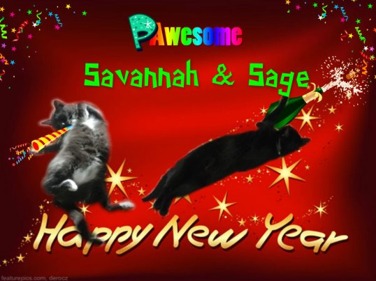 HAPPY NEW YEAR CASA SAVANNAH & SAGE