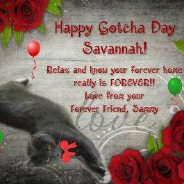 From Sammy