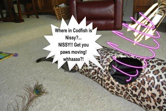 Nissy grabs Savvy_post 2