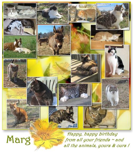 Happy Birthday MARG (Post 4.9.2014) (1)