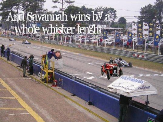 savannah wins