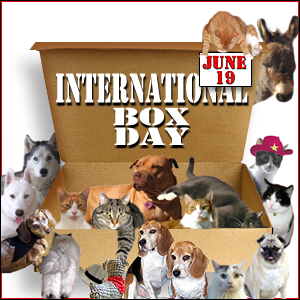 Box-Day-6.19.2014-300x300