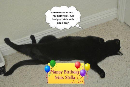 Miss Stella_ Sage