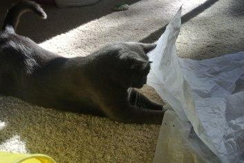 Ahhh...tissue paper!!