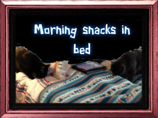 morning snacks in bed