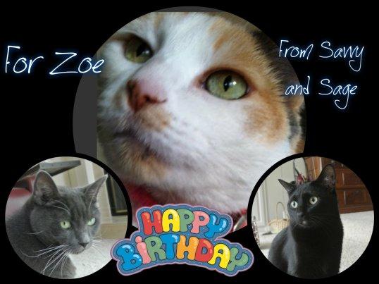 Swami Zoe card at 13