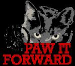 SavvySidebarPawForward