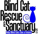 blind cat logo