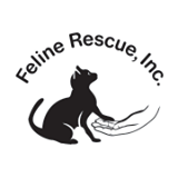 feline rescue st paul