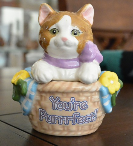 I am a purrfect new cat
