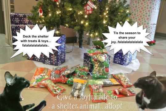 shelter gifts delivered