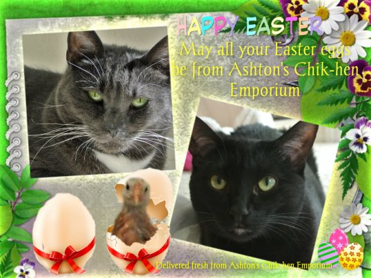 Easter 2015 card