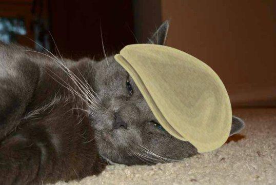 sunday selfie hat