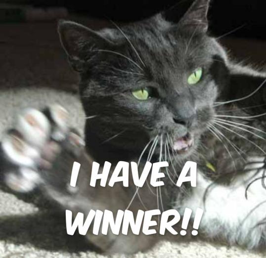 Woo Hoo!! You won't believe who won!!