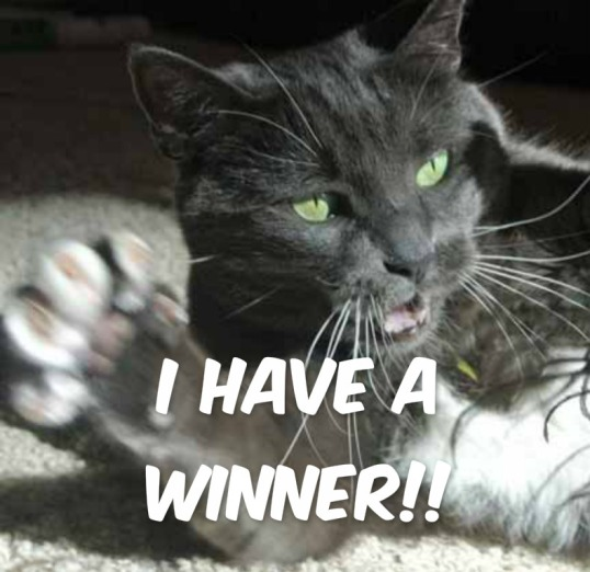 Woo Hoo!! You won't believe who won!!