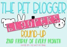 pet blogger bloopers badge