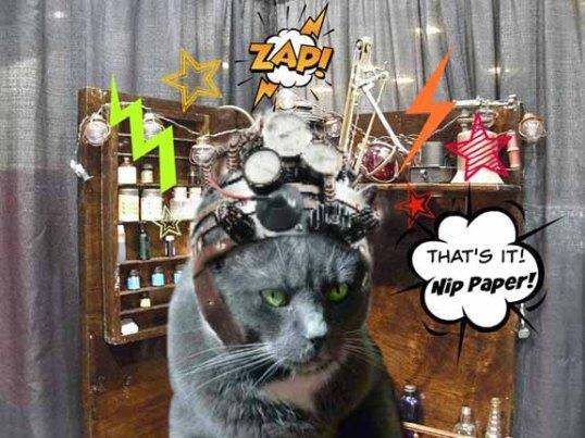 Brilliant Steam-punk Feline Scientist