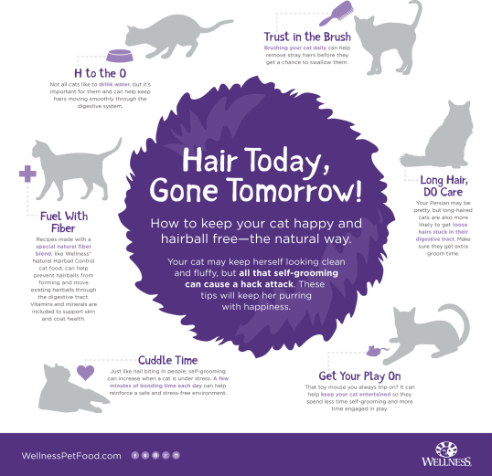 wellness-hairball-infographic-rgb_FINAL PNG