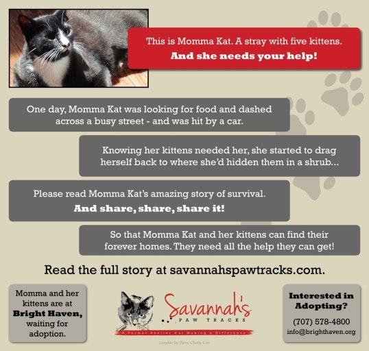 Momma Kat's Story