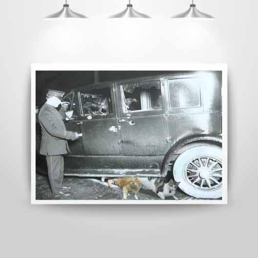 boys-under-car-