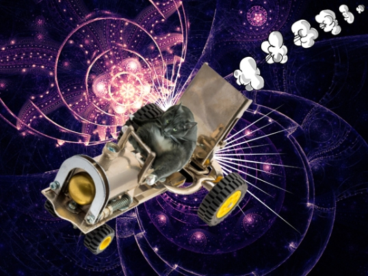 Savvy's Stellar Ride