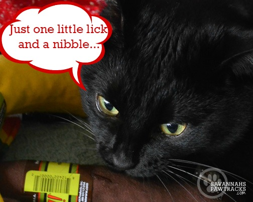 lick-and-nibble