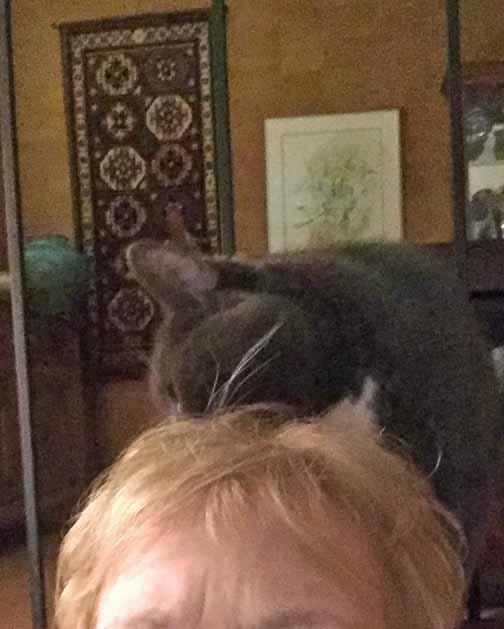 Ah, here is where her hair style needs help—chomp