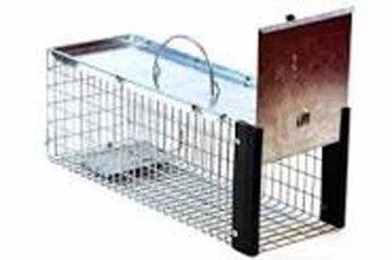 cat trap 3